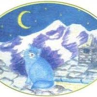 Alimentari Il Gatto Azzurro logo