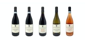 Bottiglie Borgognotta - 0,75 lt
