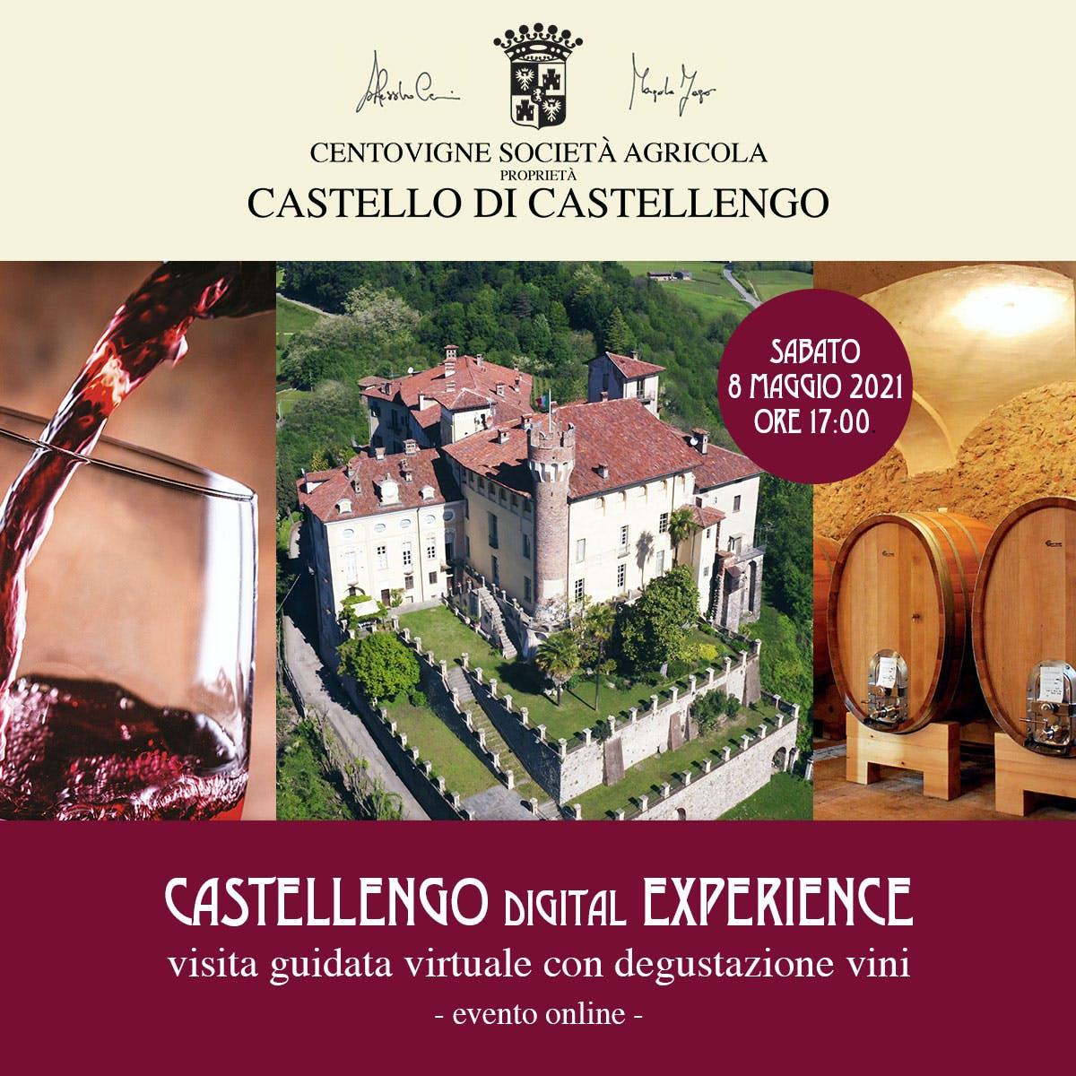 Visita guidata e degustazione vini (online)