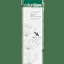 Color Daw