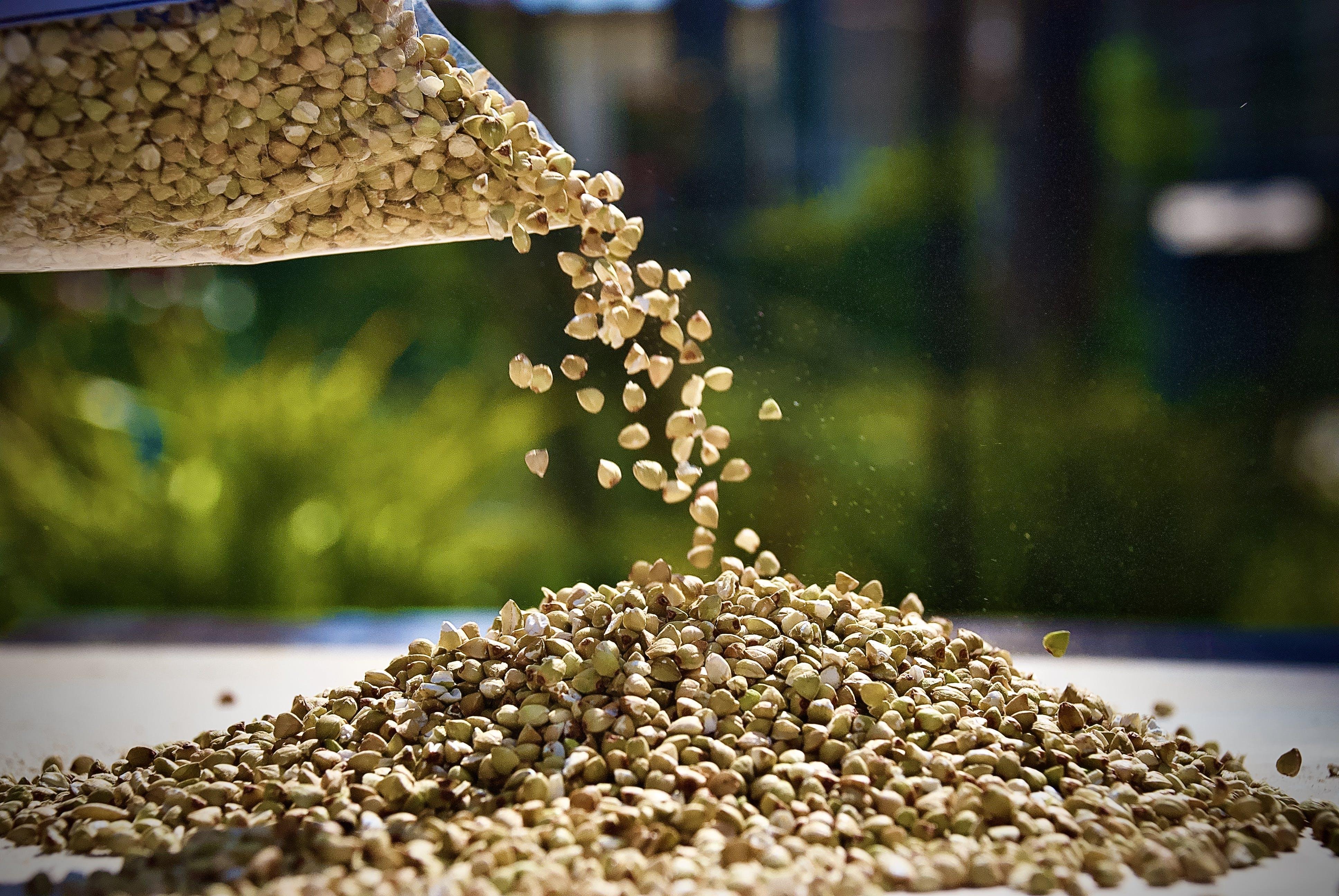 Chicchi di grano Saraceno decorticato 1Kg